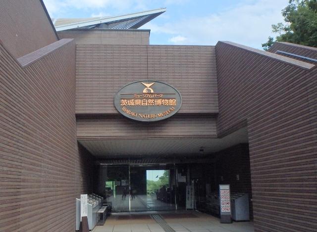 その137 ミュージアムパーク茨城県自然博物館