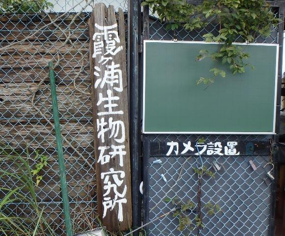 その476 霞ヶ浦生物研究所