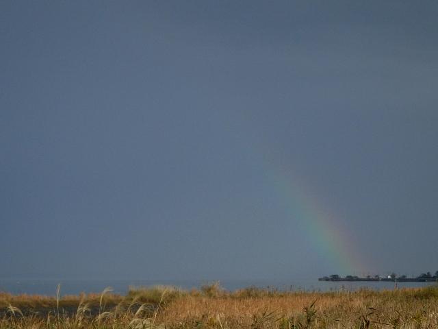 その524 虹の向こうは晴なのかしら?