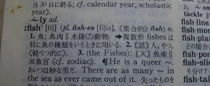 No.6    Fish